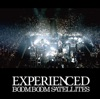 EXPERIENCED (Live Version 2010) ジャケット写真