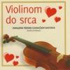Violinom do srca (Omiljene pjesme gudackih sastava)