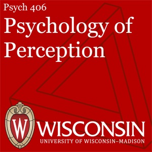 Psych 406: Psychology of Perception
