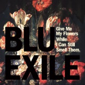Blu & Exile - The Only One (feat. Jimetta Rose)
