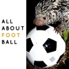 All About Football Podcast