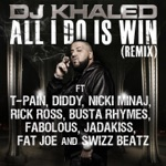 songs like All I Do Is Win (Remix) [feat. T-Pain, Diddy, Nicki Minaj, Rick Ross, Busta Rhymes, Fabolous, Jadakiss, Fat Joe, Swizz Beatz]