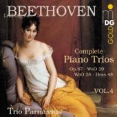 Piano Trio in B-Flat Major, Woo 39: Allegretto artwork