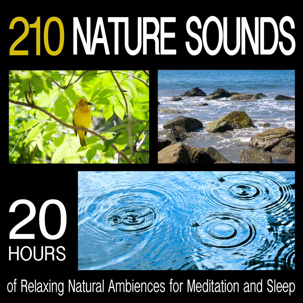 210 nature sounds 20 hours of relaxing natural ambiences for