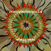 Indigenous Souls - Catching a Dream
