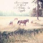 Bill Callahan - My Friend