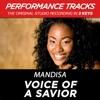 Voice of a Savior Performance Tracks EP