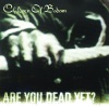 Buy Are You Dead Yet? by Children of Bodom on iTunes (搖滾)