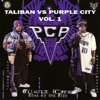 PCP Vol. 1: Taliban vs. Purple City, Purple City