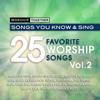 Worship Together - 25 Favorite Worship Songs, Vol. 2 - Worship Together