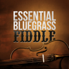 Essential Bluegrass Fiddle - Various Artists