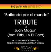 Bailando por el Mundo (Tribute Version)