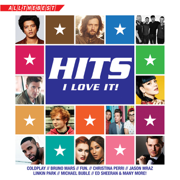Hits I Love It - Various Artists - Various Artists
