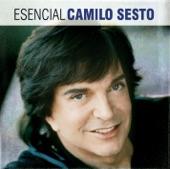 Camilo Sesto - Piel De Angel