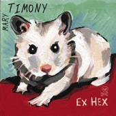 Mary Timony - In The Grass