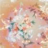 Bibio - Silver Wilkinson Album