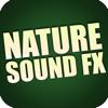 Royalty Free Sound Effects Factory - Monkey, Ape Sounds artwork