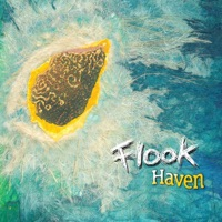Haven by Flook on Apple Music