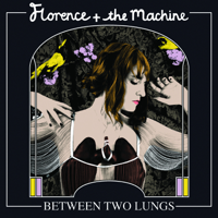 Descargar mp3  Dog Days Are Over - Florence + The Machine