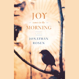 Joy Comes in the Morning  (Unabridged) - Jonathan Rosen mp3 listen download