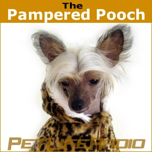 The Pampered Pooch - Dogs are not our whole life, but they make our lives whole - Pets & Animals on Pet Life Radio (PetLifeRa