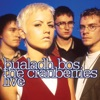 Bualadh Bos: The Cranberries Live, The Cranberries