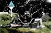 ワード / サンプル - Single ジャケット写真