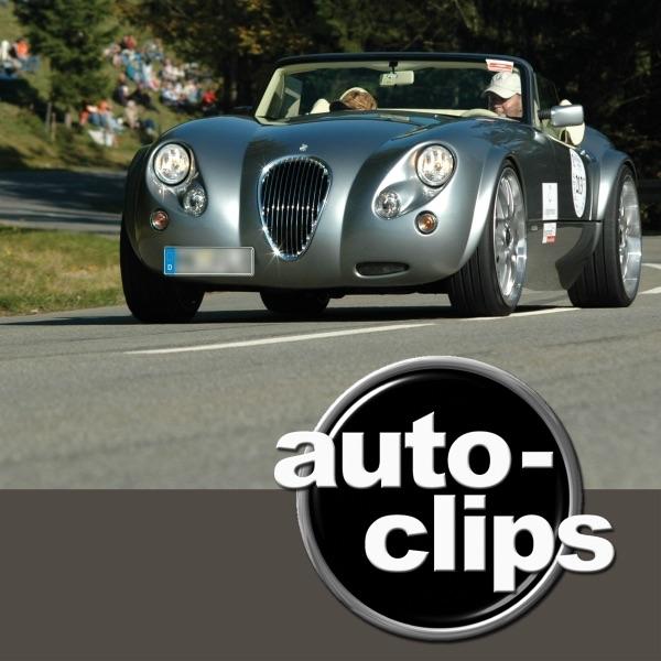 auto-clips