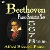ベートーヴェン:ピアノ・ソナタ 第5・6・7・8番 ジャケット写真