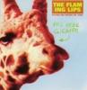 This Here Giraffe - EP ジャケット写真