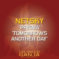 Prisma - NETSKY