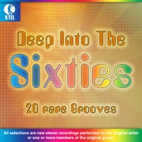 Deep Into the Sixties - 20 Rare Grooves (Rerecorded Version)