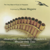 Shane Maguire - The Very Best of Enya On Panpipes  artwork