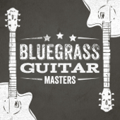 Bluegrass Guitar Masters-Various Artists