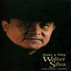 Walter Silva - El Chino de los Mandados ilustración