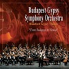 Johann Strauss - Radetzky March