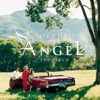 Touched By an Angel - The Album