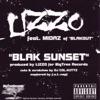 Download Lizzo Ringtones
