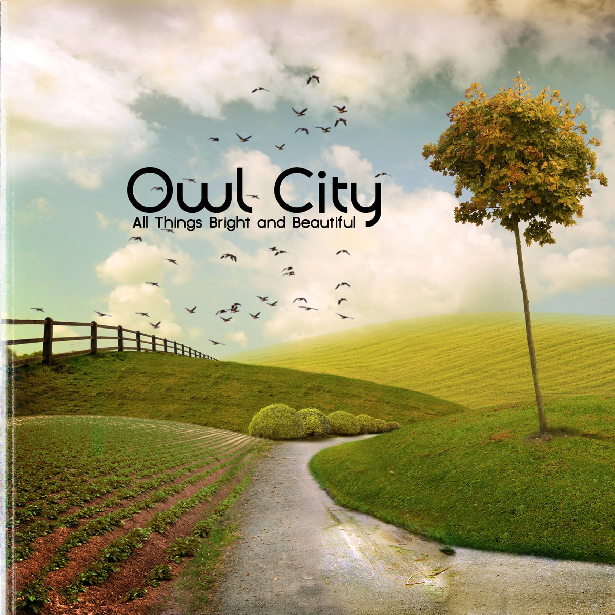 All Things Bright and Beautiful Album Cover by Owl City