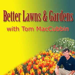 Better Lawns & Gardens with Tom MacCubbin
