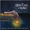 Underwater Sunshine (or What We Did On Our Summer Vacation), Counting Crows