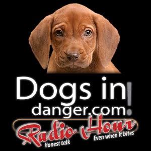 DogsInDanger Radio Hour
