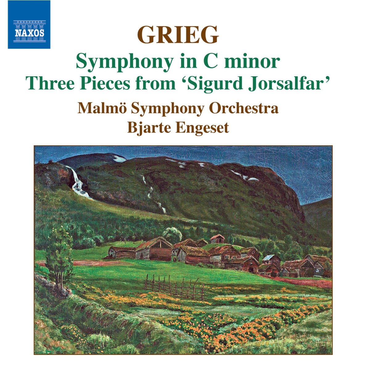 Grieg Symphony in C Minor Bjarte Engeset  Malmö Symphony Orchestra CD cover