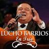 Lucho Barrios En Trío, Lucho Barrios