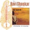 The Ravi Shankar Collection A Morning Raga An Evening Raga