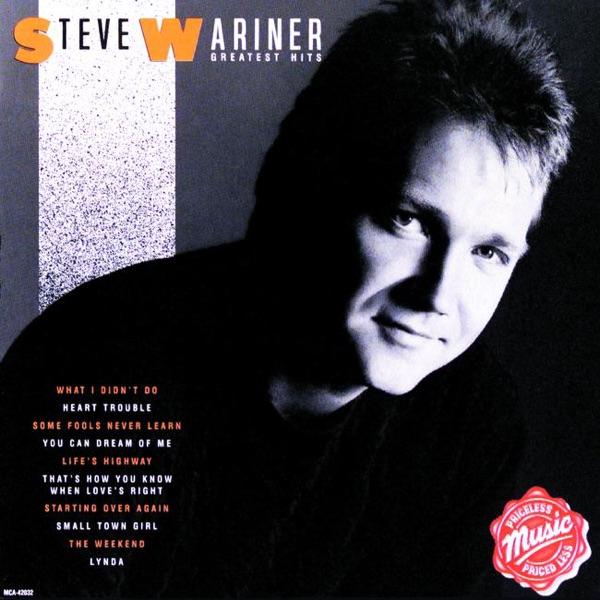 Steve Wariner - What I Didn't Do