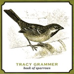Tracy Grammer - April Come She Will