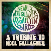 A Tribute to Noel Gallagher - EP