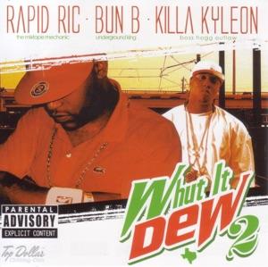Bun B Countin Money Lyrics MP3 Download