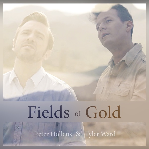 Fields of Gold (A Cappella) [feat. Lindsey Stirling] - Single